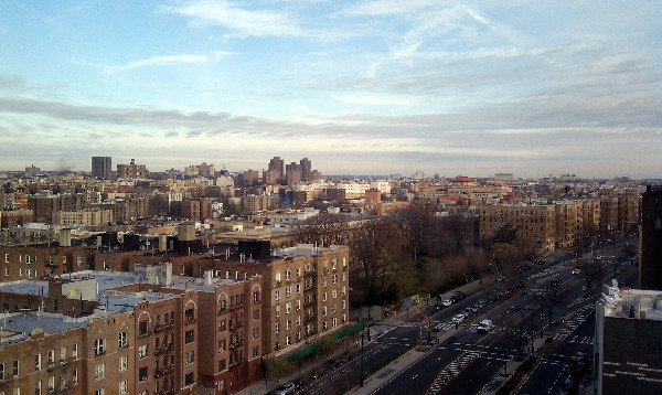 The Beautiful Bronx